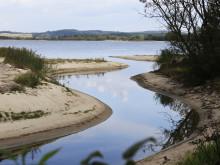 Brunare råvatten är ett växande problem