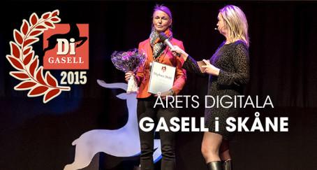 Flygstolen vinner pris som årets digitala gasell i Skåne
