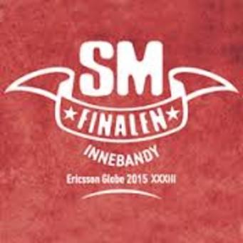 Avisita blir officiell bokningspartner för SM-finalerna i innebandy 2015-2017