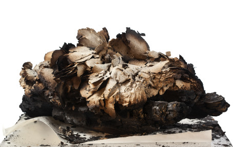 Berättelsen om Ösjöfors handpappersbruk ges ut som bok