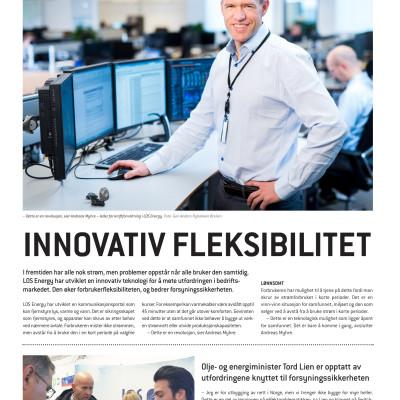 Presseklipp fra Energi21-bilag i Dagens Næringsliv - Innovativ fleksibilitet