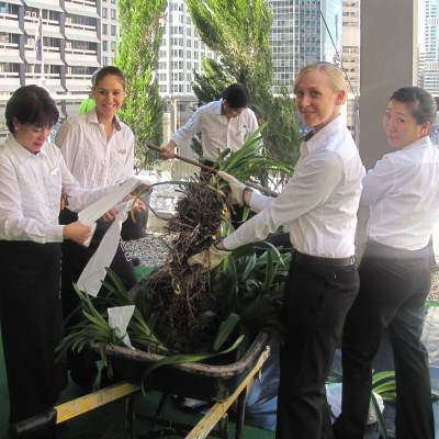 SOFITEL BRISBANE CENTRAL ACHIEVES ISO 14001 ACCREDITATION