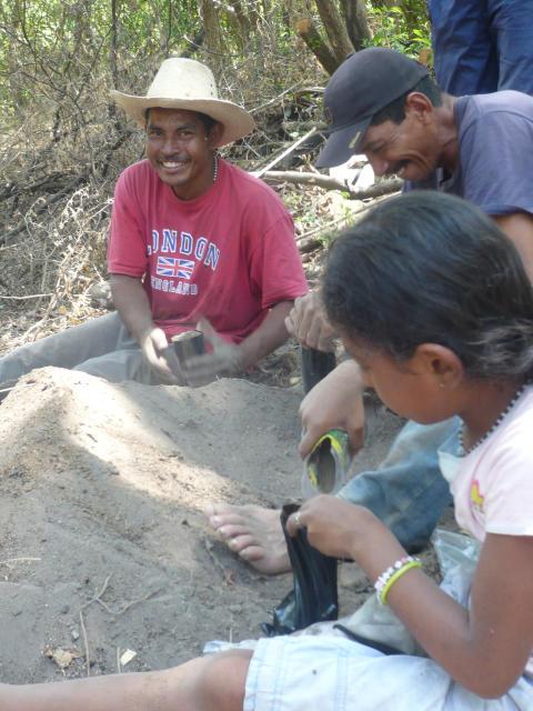 Trädprojekt i Nicaragua