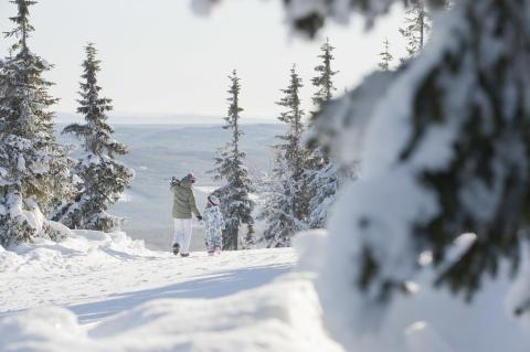 SkiStar - vintervy