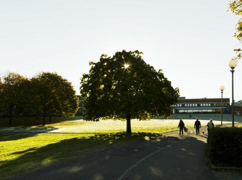 Pressinbjudan: Framtidsseminarium om Campus Näckrosen i Göteborg