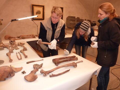 Jakten på Ladulås grav - Vänersborgs museum