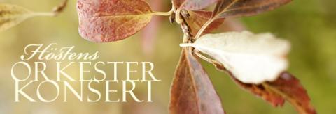 Bel canto i höstens orkesterkonsert