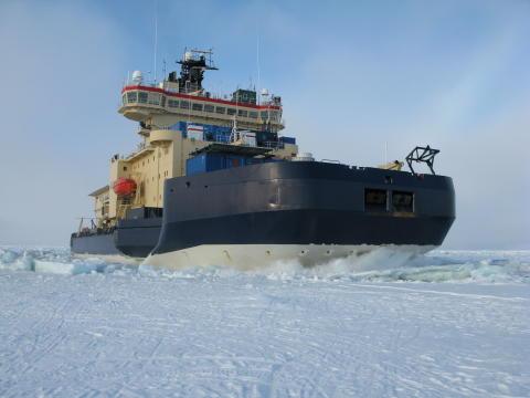 Linda Karlsson, konsthantverkare till Arktis