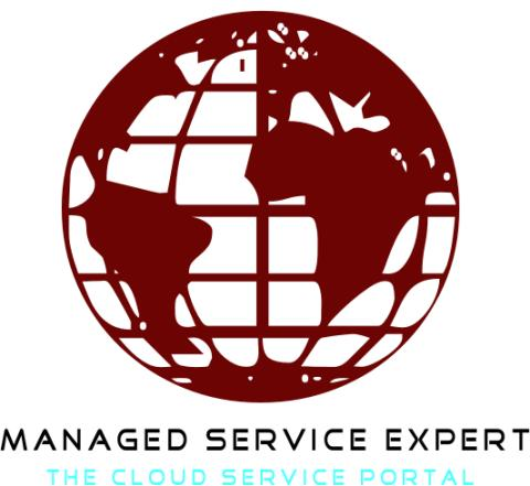 Managed Service Expert unveils partnership with Workbooks.com and innovative cloud services portal website.