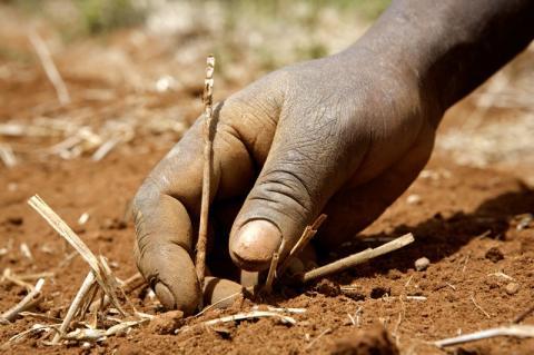Världsbanken pushar för falska lösningar på klimatmötet