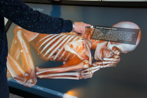 Svensk visualiseringsteknik avslöjar ett 5,500 år gammalt mordmysterium