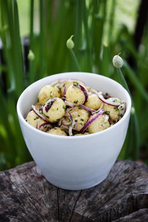 Månadens recept augusti - Honungs- och senapsmarinerad potatissallad