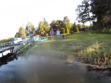 Amfibielöpning i skärgården