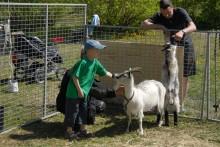 Vårbruksdag på Hästa gård 2 maj
