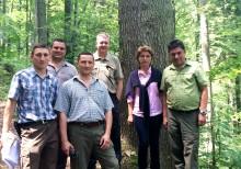 Elmia och DLG lanserar skogsmässa i Transylvanien