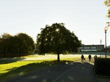 Arkitekter tar fram förslag på Campus Näckrosen i Göteborg