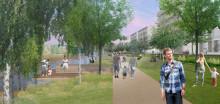 C/O City lanserar verktyg för urbana ekosystemtjänster