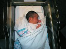 Moderkakan skyddar fostret mot mammans immunförsvar