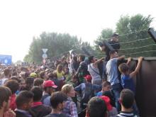 """EU: Flyktingar dör på grund av EU:s stängsel och """"grindvakter"""""""