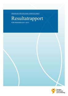Program för hållbar jämställdhet. Resultatrapport för perioden 2011-2013.