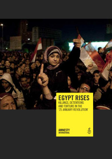"Egypt rises: killings, detentions and torture in the ""25 January Revolution"""
