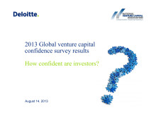 2013 Global Venture Capital Confidence survey