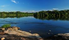 Peugeot lanserar fler miljöbilar och planterar ännu fler träd i Amazonas