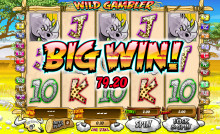 Wild Gambler Slot is launched!