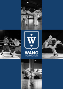 Brosjyre for Wang Toppidrett
