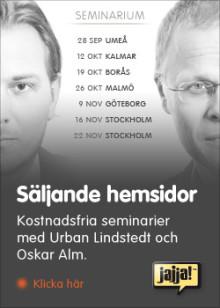 Säljande hemsidor (Malmö)