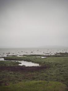 Så får alla plats i havet – seminarium i Almedalen