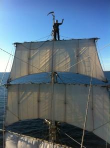 C2 Vertical Safety fortsätter sitt engagemang för ett framtida friskt Östersjön. Nytt förlängt partnerskap i Initiativet Hålbara Hav