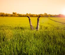 Nå er det kraftig spredning av gresspollen - hvilken medisin virker best?