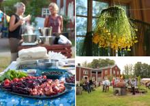 Kunskap, inspiration och hållbar utveckling på årets Rekofestival!