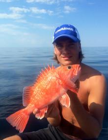 Fyra fina rekordfiskar i sommarvärmen