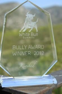 Rebtel Crowned 2012 Bully Award Winner