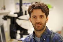 Nanosprickor kan förbättra framtidens elektronik