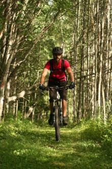 Johan Ranbrandts blogg - Till skogs med mountainbike