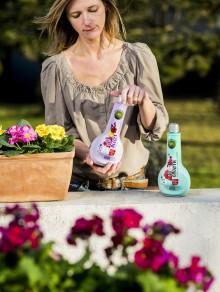 Bayer Garden lanserar Vitality – en ny serie växtvårdsprodukter med unika egenskaper