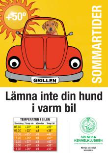 SKK testar: Så hett blir det i bilen