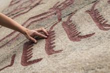 Händelserik sommar på Vitlycke museum när Världsarvet i Tanum firar 20 år.