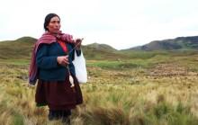 Máxima Acuña vann (del)seger över gruv-Goliat