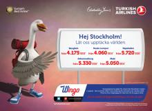 Upptäck världen med Wingo och Turkish Airlines i höst!