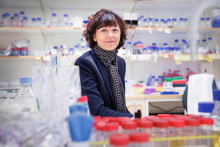 Emmanuelle Charpentier tilldelas Louis-Jeantetpriset i medicin 2015