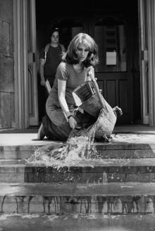 Marabouparken: Maintenance Art Works 1969–1980/From Her House