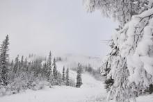 SkiStar Vemdalen: Premiäröppnar på torsdag
