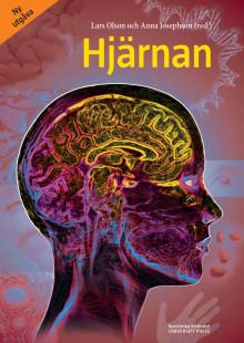 Utdrag ur boken Hjärnan