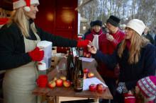 Skånska julmarknader och julfirande i Skåne 2010