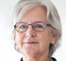 Lena Celion (M) träffar infrastrukturministern: Färjetrafiken måste ges långsiktiga förutsättningar