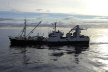 Färre yrkesfiskare – trenden håller i sig